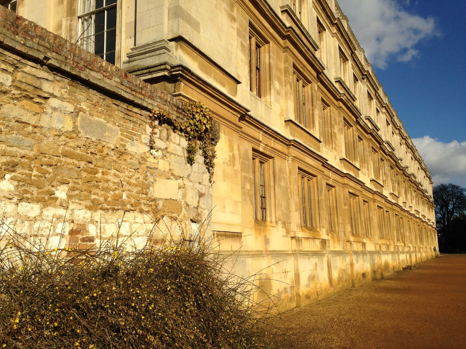 Image of Clare College Old Court bathed in afternoon sunlight, the Ketton limestone building stones are yellowy-beige