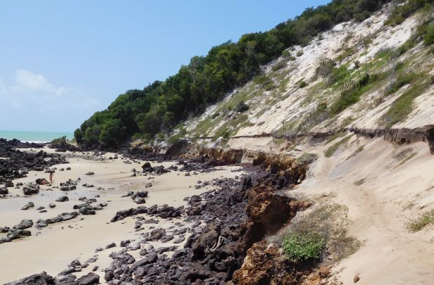 A raised beach deposit (dark horizon in the lower half of the cliff section) in the city of Natal, Brazil; image credit Marthe Klöcking.