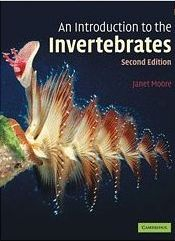 An introduction to the Invertebrates front cover