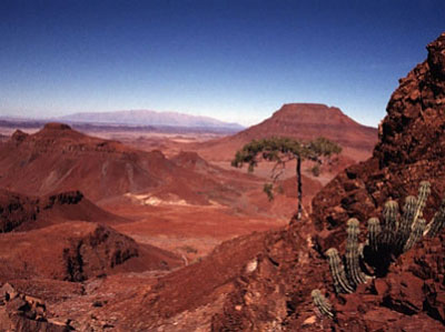 Etendeka flood basalts, NW Namibia