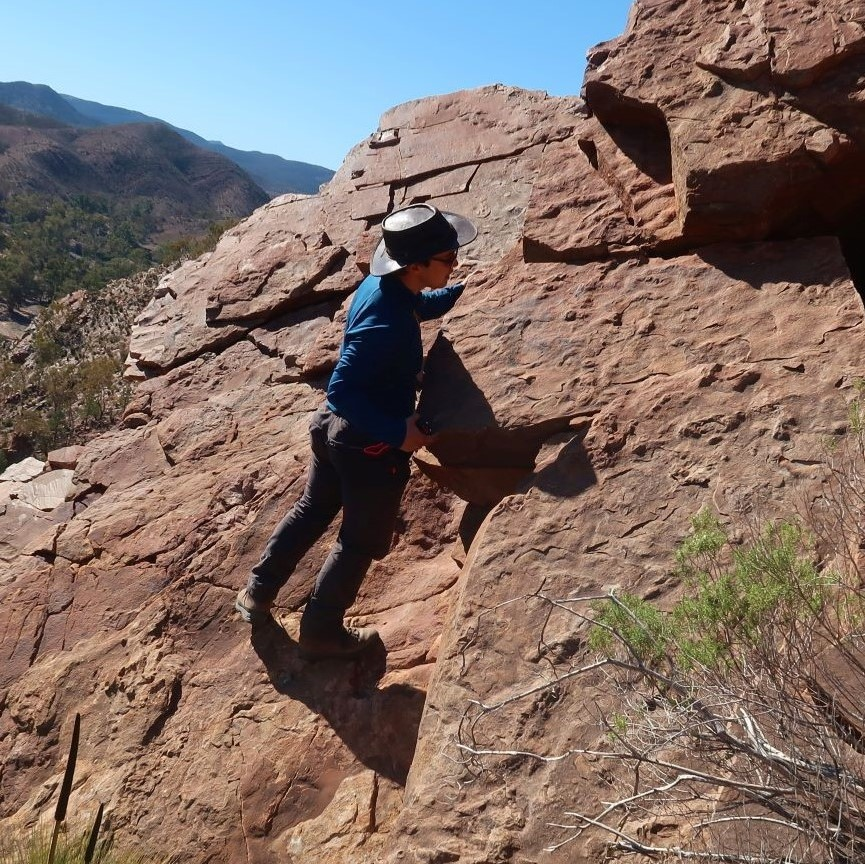 Geologist Alex Liu hunting for fossils in rocks in Australia