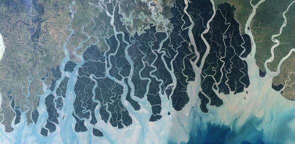 Ganges Sundarban © NASA