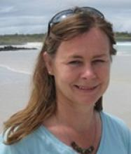 Professor Sally Anne Gibson's picture